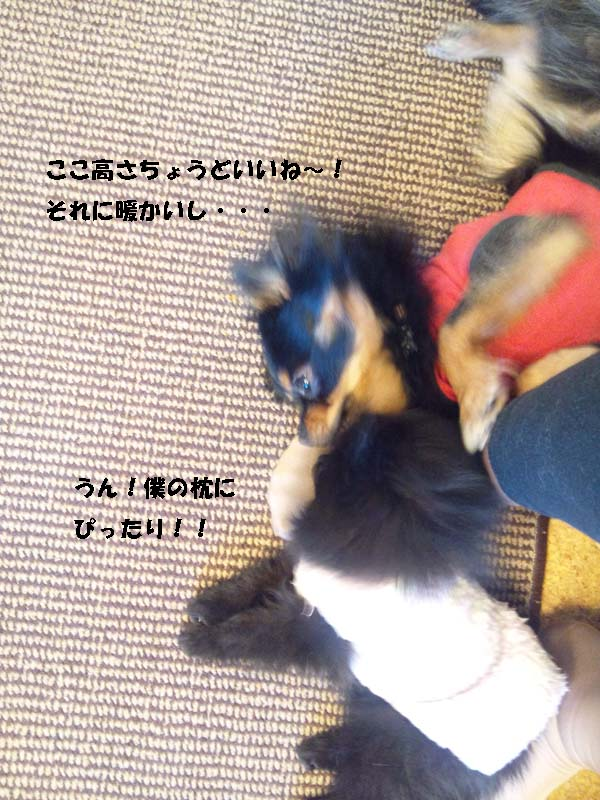 150107_104222-1.jpg