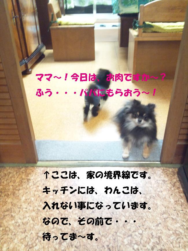 150119_171950-1.jpg
