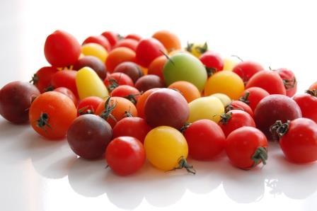 カラートマト集団 w