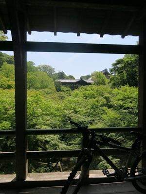 東福寺通天橋1506