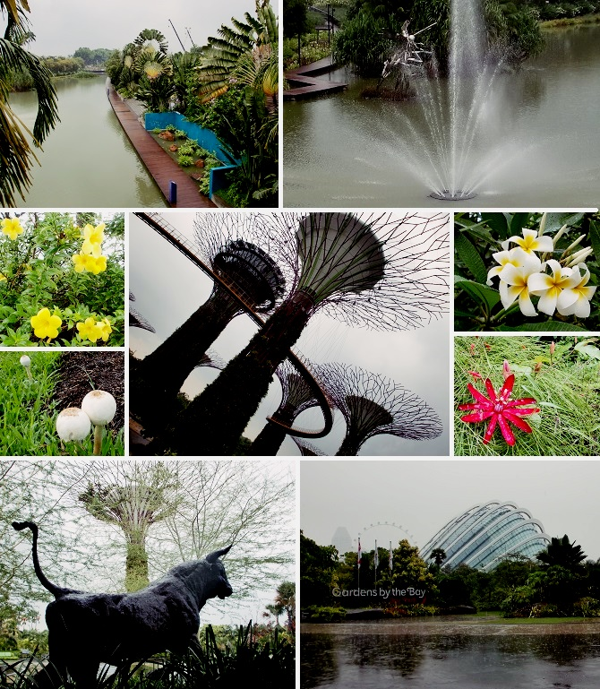 CIMG5959-2015Gardens by the Bay②