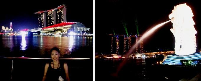 CIMG6023-2015シンガポール