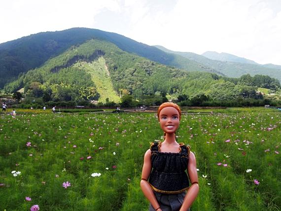 himawari-20150814-10s.jpg