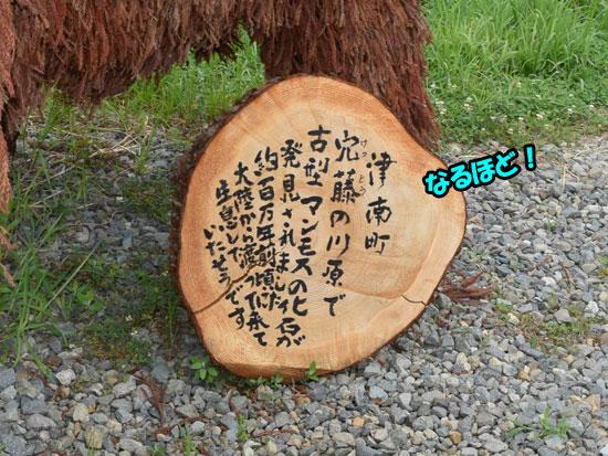 DSC_0108_201508202230510c4.jpg