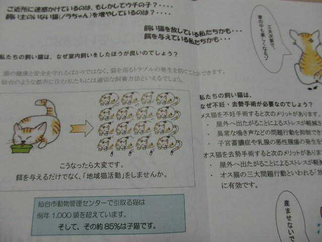 P8230780.jpg
