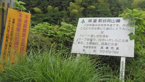 daikokuba-ga-1506-009b.jpg