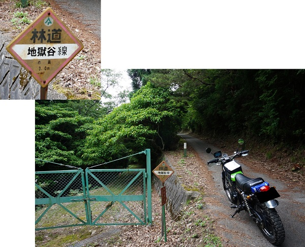 daikokuba-ga-1506-013b.jpg