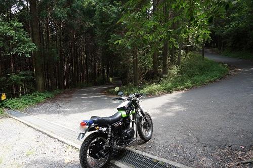 daikokuba-ga-1506-030b.jpg