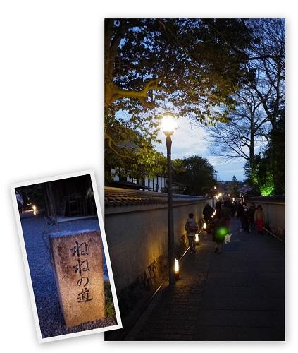 hanatouro1503-012b.jpg