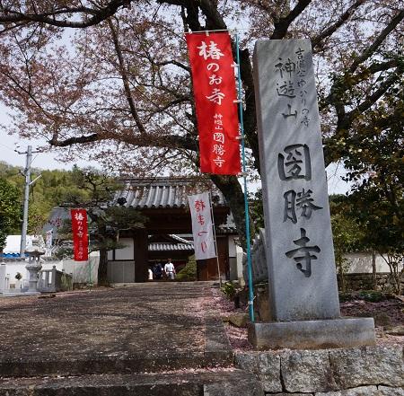 okayamatu1504-016b.jpg