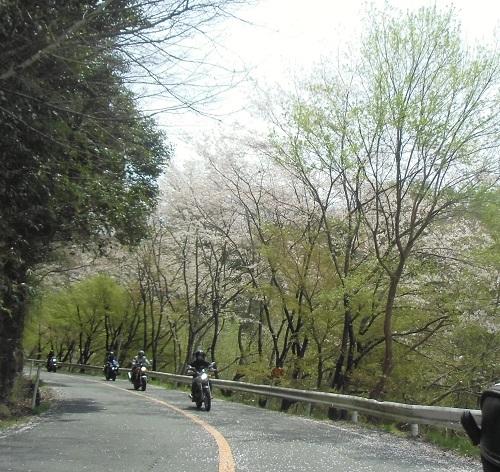 okayamatu1504-023b.jpg