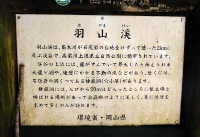 okayamatu1504-029b.jpg