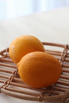 レモンムース1
