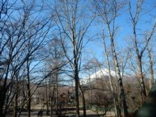 天窓からも富士山