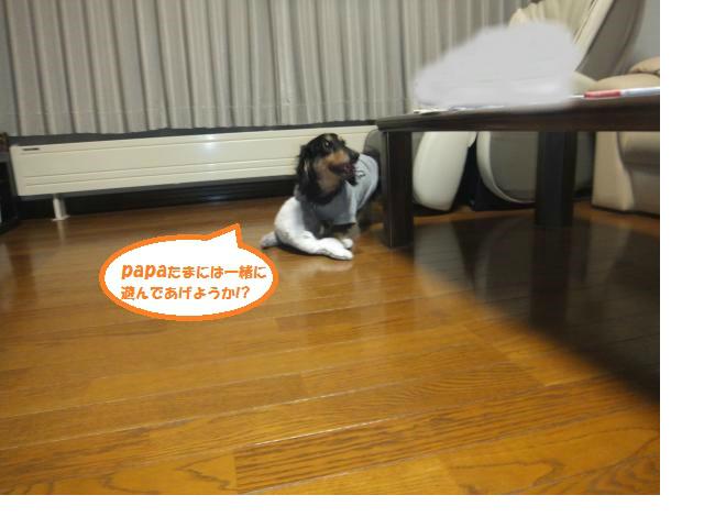 snap_maro0829_2015409950.jpg