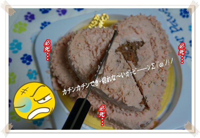 切れないケーキ