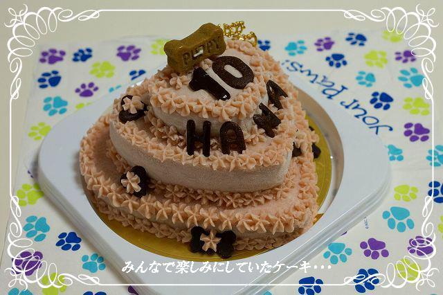 楽しみなケーキ