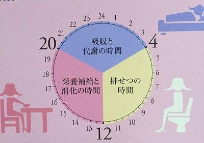 体内リズム (1)