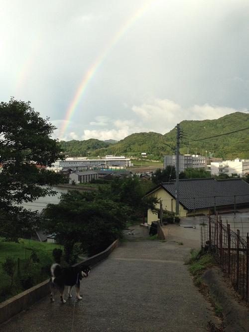 見て~虹だよぉ