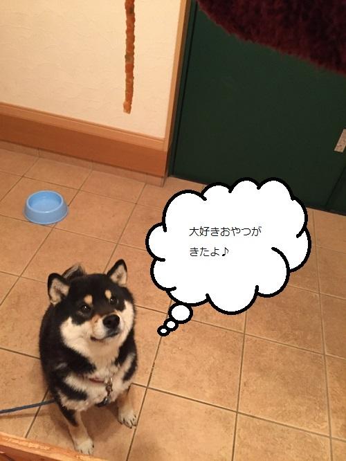 まるちゃん2015032501
