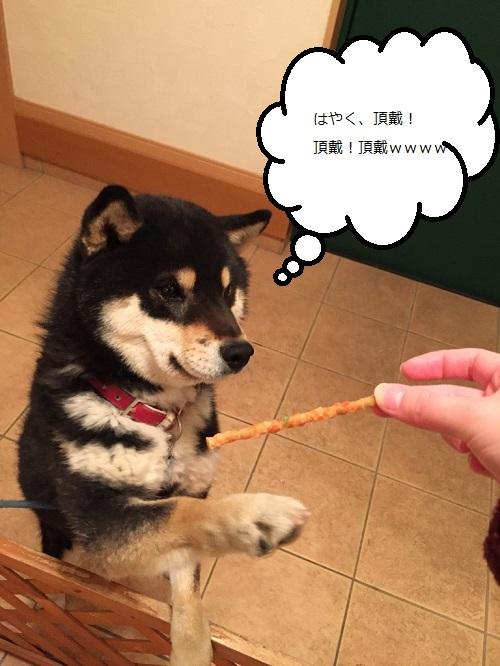 まるちゃん2015032503