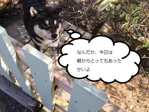 まるちゃん2015032701