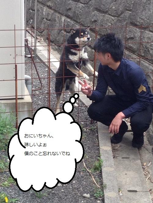 まるちゃん2015032801