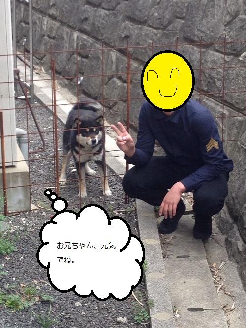 まるちゃん2015032803