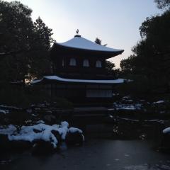 2015-01-04 011 (1280x1280)