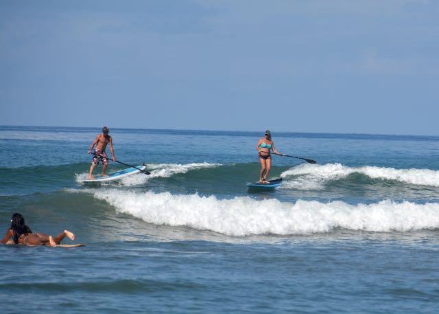 cove-surf - 1 (2)