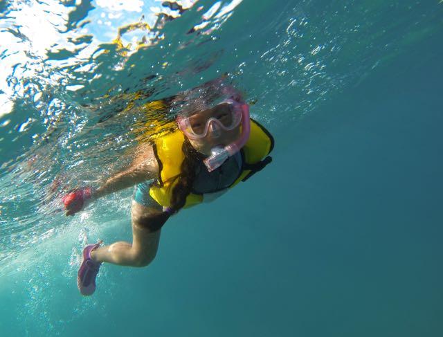 snorkel-8-18 - 1 (1)