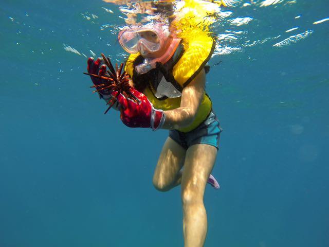 snorkel-8-18 - 1 (4)