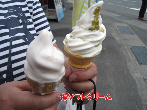 梅ソフトクリーム