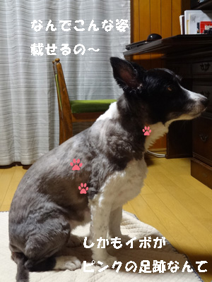 いぼ2 (2)