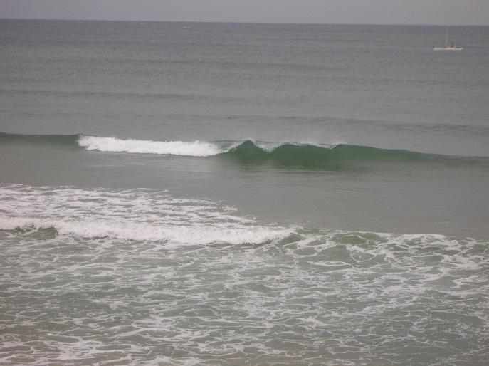 まごにも波ww 004
