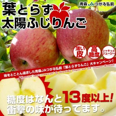 apple61_1.jpg