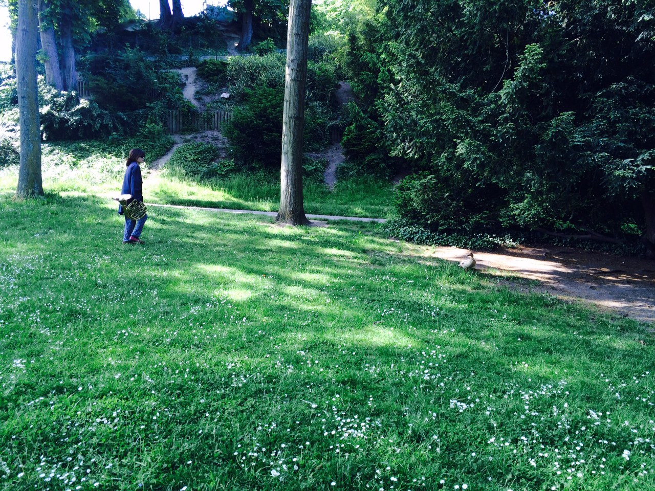 parc cor mai 2015 2