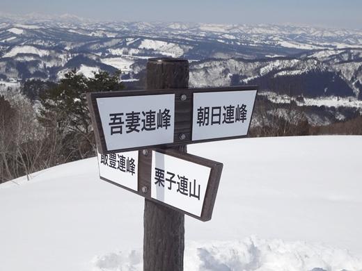 20150315-28.jpg
