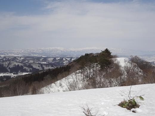 20150320-22.jpg