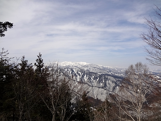 20150328-73.jpg