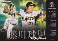 ジョーシンカレンダー2008年_球児