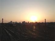 20150427三鷹跨線橋からの夕陽1