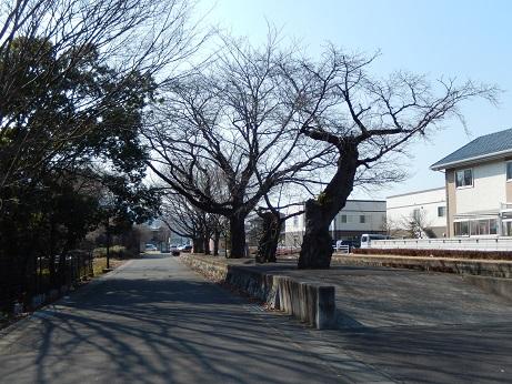 DSCN5860.jpg