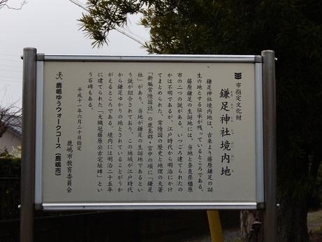 DSCN6858.jpg