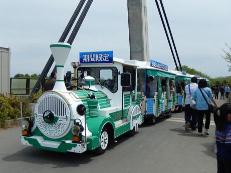 DSCN7353.jpg