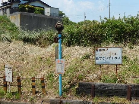 DSCN7544.jpg