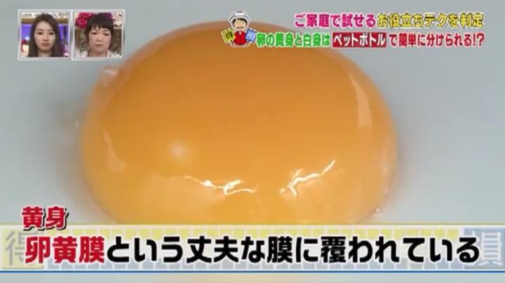 坂上忍の得ワザ!損ワザ!黄身は卵黄膜に覆われてる