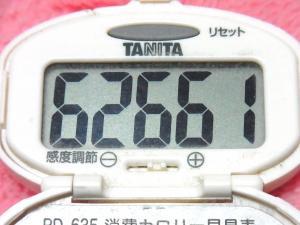 150308-291歩数計(S)