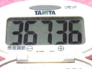 150314-291歩数計(S)