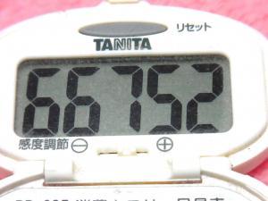 150315-291歩数計(S)